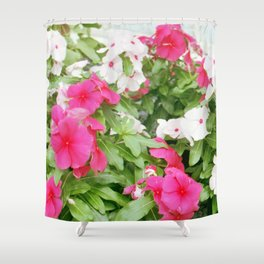 Pink & White Shower Curtain