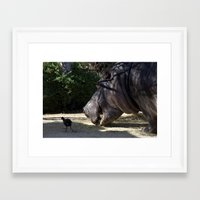 vegetarian Framed Art Prints featuring Hippo Vegetarian by GPNaturePhotos