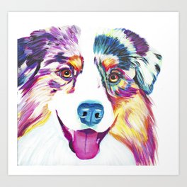 Happy Australian Shepherd Art Print