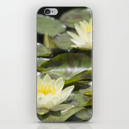 Longwood Gardens - Spring Series 303 iPhone Skin