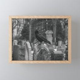Crow In Shades Of Stone Framed Mini Art Print