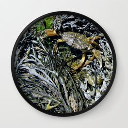 Soft Shell Crab Wall Clock