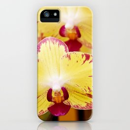 Close up Orchid #8 iPhone Case