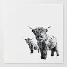 LULU & SARA - Scottish Highland Cows Canvas Print