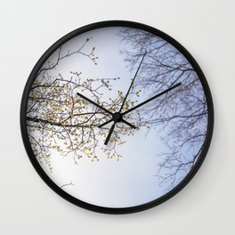 Spring branches Wall Clock