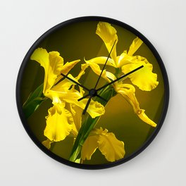 Yellow Daffodils in Exquisite Repose Wall Clock