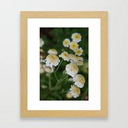 Flora (10) Framed Art Print