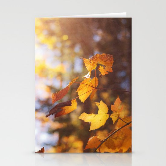 sun soaked autumn Stationery Cards