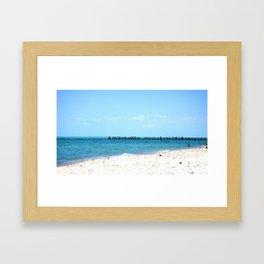 Beach & Birds Framed Art Print