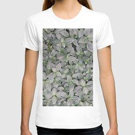 Fittonia albivenis T-shirt