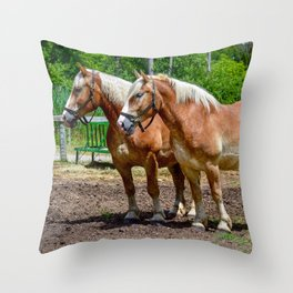 """""""Equine Duo"""" Throw Pillow"""