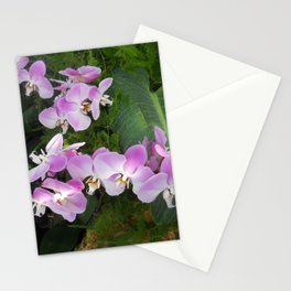 Purple tropical orchids Stationery Cards