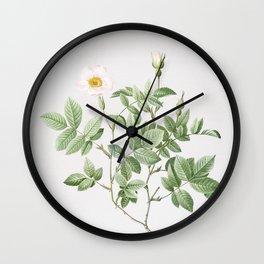 Vintage Rosebush Illustration Wall Clock