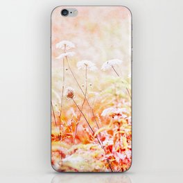 Daucus Carota iPhone Skin