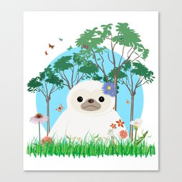 Super cute white two toed Sloth Canvas Print