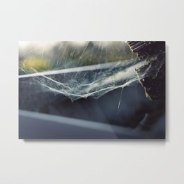 Above the Crawl Metal Print