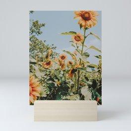 sunflower field v Mini Art Print