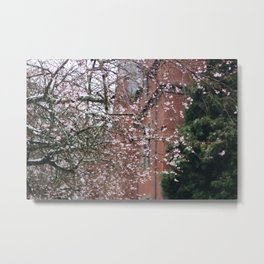 Cherry Blossoms in the Snow Metal Print