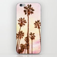 Coconut Groove #society6 #decor #lifestyle #buyart iPhone & iPod Skin