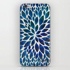 Petal Burst #15 iPhone & iPod Skin