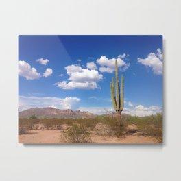 Desert Love Metal Print