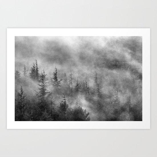 Misty forest. BW Art Print