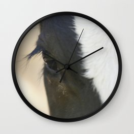 Cow eyes PHOTOGRAPHY Wall Clock