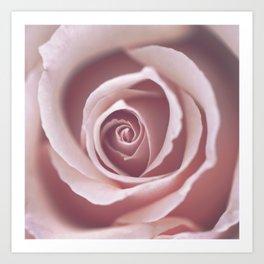 Pink Pastel Rose Art Print