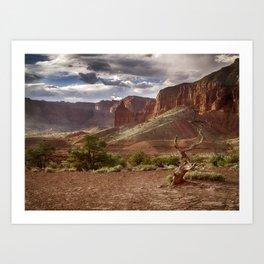 Mountains at Capitol Reef National Park - Utah Art Print