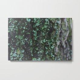 Emerald Bark Metal Print