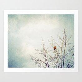 Bird in Tree Photography, Robin Birds Sky Photo, Tree Branches Art Print