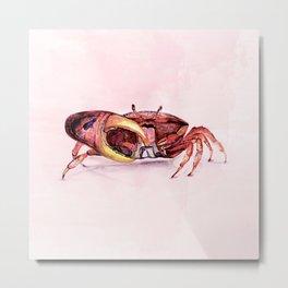 Holly crab! Metal Print