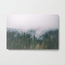 Forest Fog XI Metal Print