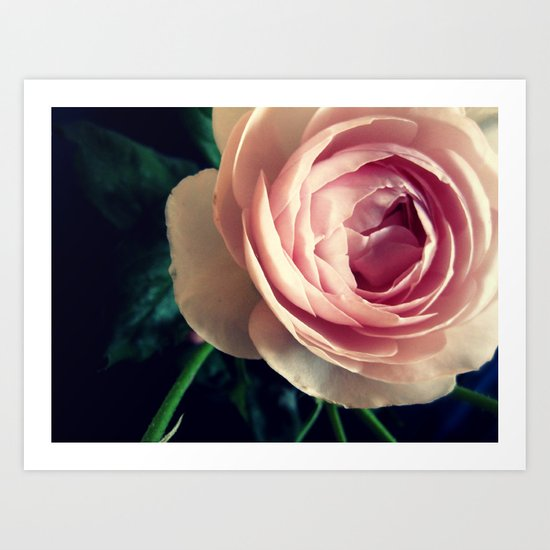 Stop to smell the roses 2 Art Print