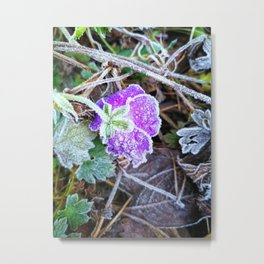 Frozen flower Metal Print