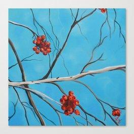 Winter Fruit Series (Part 3) Canvas Print