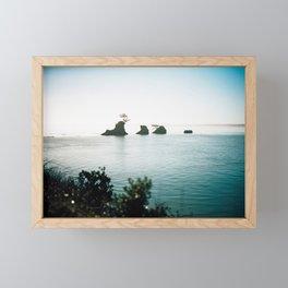 Floating Trees in Tillamook Bay - Film Photograph of the Oregon Coast Framed Mini Art Print