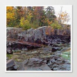Rock and Foliage Canvas Print