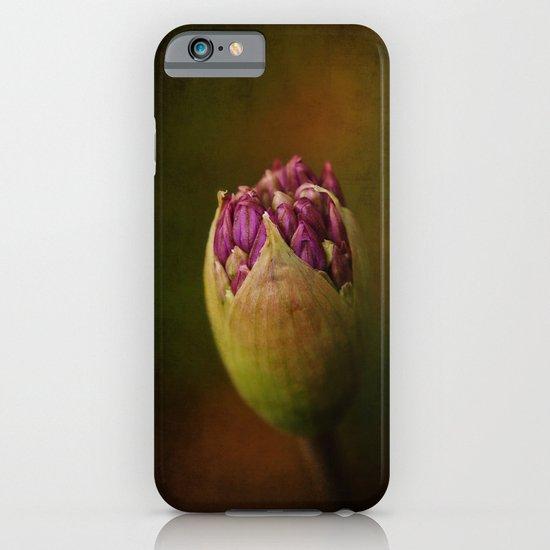 Allium in May iPhone & iPod Case