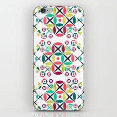 The Fence  iPhone & iPod Skin