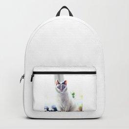 The Magic Cat Backpack