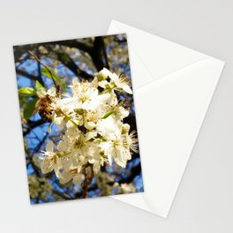 bees on flower Stationery Cards