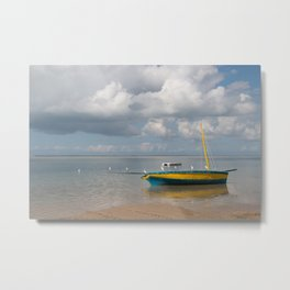 Birds on a Dhow Metal Print