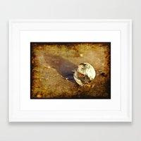 seashell Framed Art Prints featuring Seashell by Svetlana Sewell