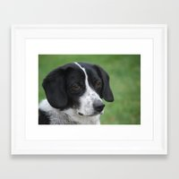 snoopy Framed Art Prints featuring Snoopy Lookalike  by Melinda F Schneider