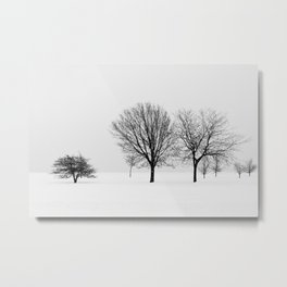 Lakeview Trees In Snow Metal Print