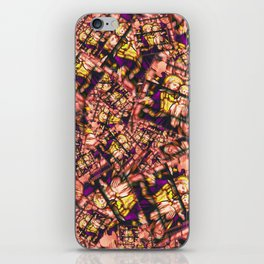 Jesus and Mary! it's a stampede of stamps! iPhone Skin