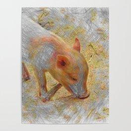 Artistic Animal Piglet Poster