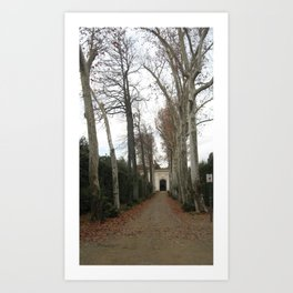 Spooky Trees Art Print