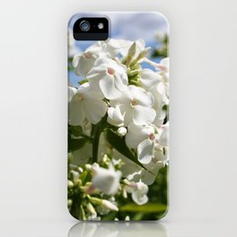 White Flowers & Blue Sky iPhone Case